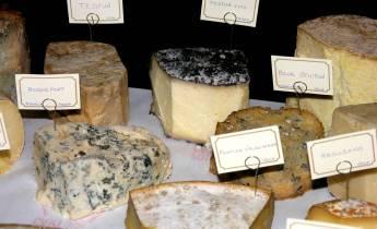 Selekcja serów - jakie do tego wino?